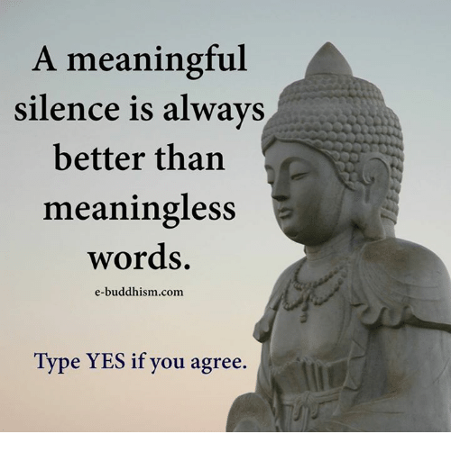 Memes, Buddhism, and Silence: A meaningful  silence is always  better than  meaningless  words.  e-buddhism com  Type YES if you agree.