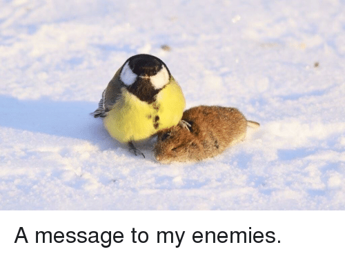 Enemies,  Message, and  a Message