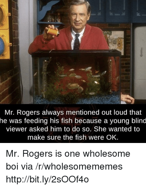 Fish, Http, and Wholesome: a.  Mr. Rogers always mentioned out loud that  he  was feeding his fish because a young blind  viewer asked him to do so. She wanted to  make sure the fish were OK. Mr. Rogers is one wholesome boi via /r/wholesomememes http://bit.ly/2sOOf4o