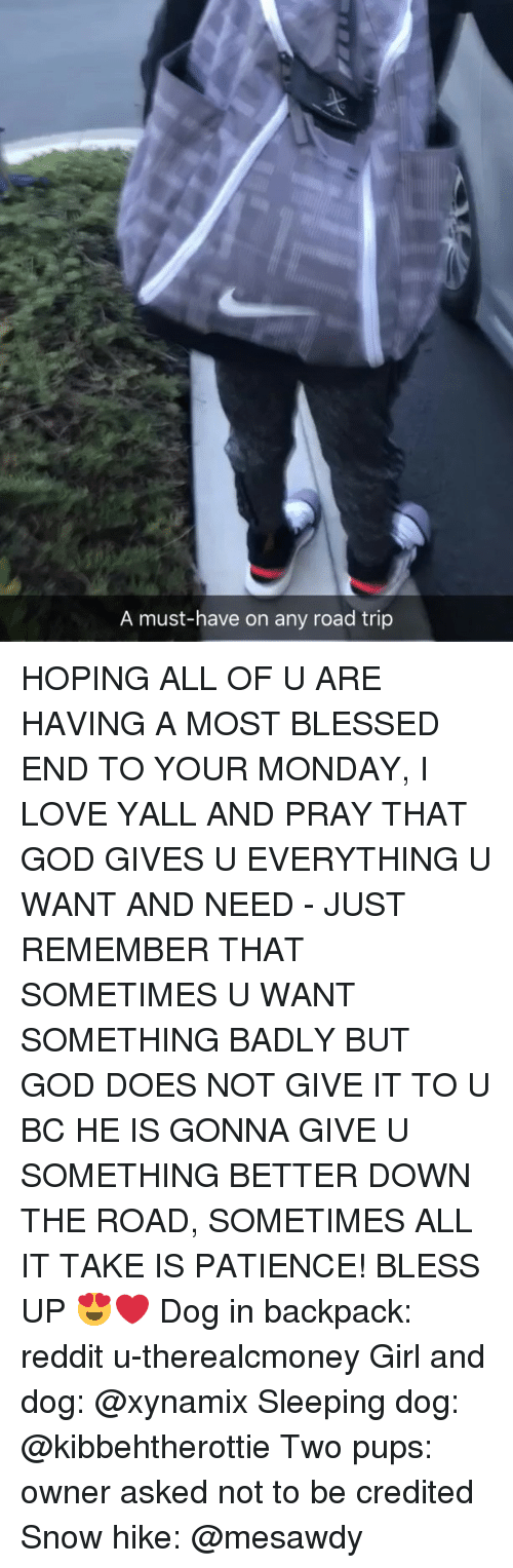 Bless Up, Blessed, and God: A must-have on any road trip HOPING ALL OF U ARE HAVING A MOST BLESSED END TO YOUR MONDAY, I LOVE YALL AND PRAY THAT GOD GIVES U EVERYTHING U WANT AND NEED - JUST REMEMBER THAT SOMETIMES U WANT SOMETHING BADLY BUT GOD DOES NOT GIVE IT TO U BC HE IS GONNA GIVE U SOMETHING BETTER DOWN THE ROAD, SOMETIMES ALL IT TAKE IS PATIENCE! BLESS UP 😍❤️ Dog in backpack: reddit u-therealcmoney Girl and dog: @xynamix Sleeping dog: @kibbehtherottie Two pups: owner asked not to be credited Snow hike: @mesawdy