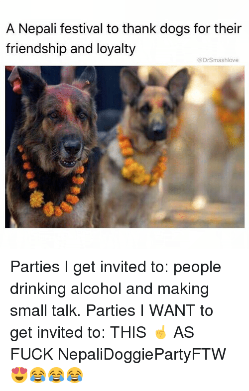 Dogs, Drinking, and Memes: A Nepali festival to thank dogs for their  friendship and loyalty  @DrSmashlove Parties I get invited to: people drinking alcohol and making small talk. Parties I WANT to get invited to: THIS ☝️ AS FUCK NepaliDoggiePartyFTW 😍😂😂😂