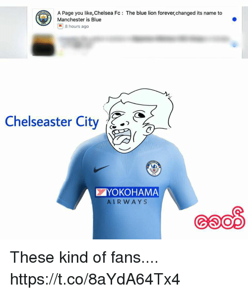 Chelsea, Memes, and Blue: A Page you like, Chelsea Fc: The blue lion forever,changed its name to  Manchester is Blue  | 8 hours ago  Chelseaster City^.>  ぐ  YOKOHAMA  AIRWAYS These kind of fans.... https://t.co/8aYdA64Tx4