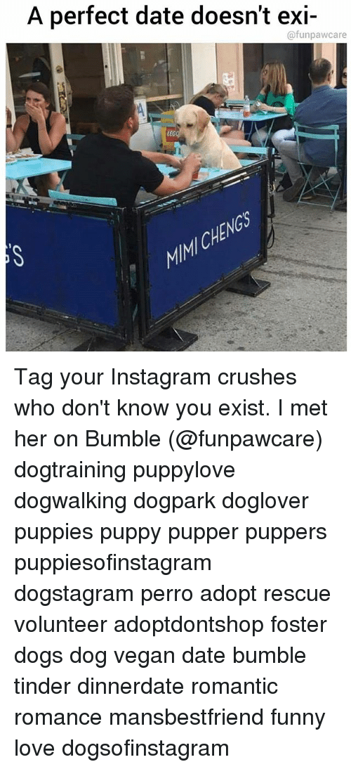 Dogs, Funny, And Instagram: A Perfect Date Doesnt Exi  @funpawcare LEG