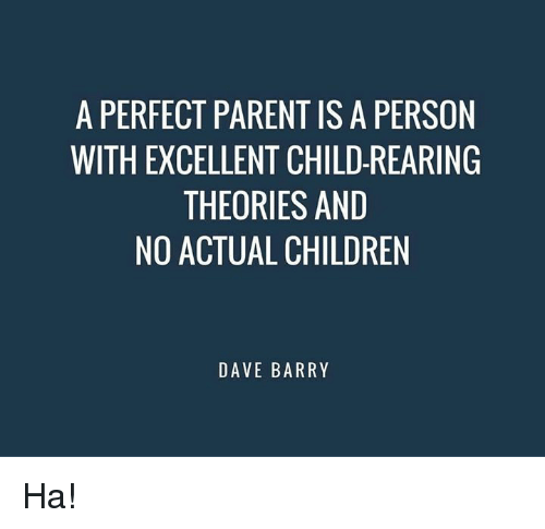 A Perfect Parent Is A Person With Excellent Child Rearing Theories