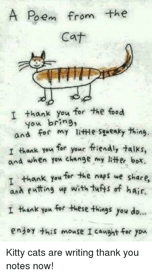 Cats, Food, and Thank You: A Poem from the  Cat  I thank you for the food  you bring,  and for my litHe syueaky thing.  I thank you far your friendly talks,  and when yex change my litter box.  ank you for the naps we share  and eatting up with tuts of hair.  I thank you for these things you dio.  enjoy thiS mouse I caught for yon <p>Kitty cats are writing thank you notes now!</p>