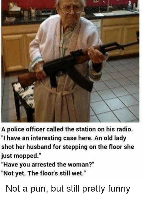 """Funny, Memes, and Police: A police officer called the station on his radio.  """"I have an interesting case here. An old lady  shot her husband for stepping on the floor she  just mopped.""""  """"Have you arrested the woman?""""  """"Not yet. The floor's still wet."""" Not a pun, but still pretty funny"""