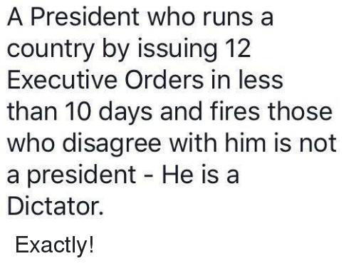 Memes, 🤖, and Executive Order: A President who runs a  country by issuing 12  Executive Orders in less  than 10 days and fires those  who disagree with him is not  a president He is a  Dictator. Exactly!