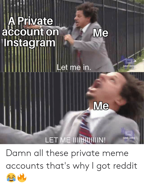 Instagram, Meme, and Reddit: A Private  accounton  Instagram*  Me  et me in  adult swim  Me  [aduit swim  LET ME IIIN Damn all these private meme accounts that's why I got reddit😂🔥
