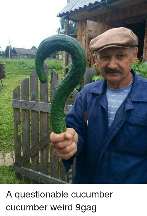 9gag, Memes, and Weird: A questionable cucumber cucumber weird 9gag