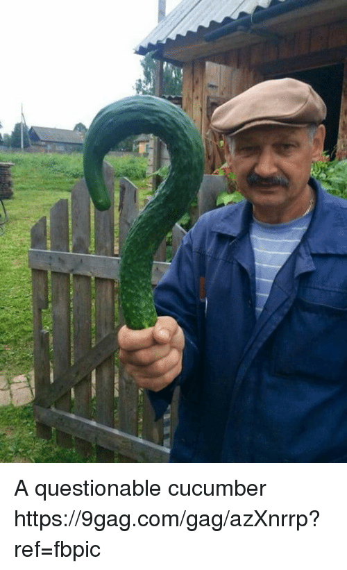9gag, Dank, and 🤖: A questionable cucumber https://9gag.com/gag/azXnrrp?ref=fbpic
