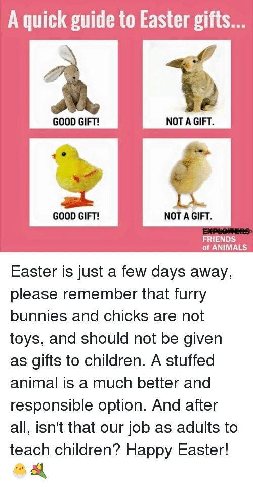 A quick guide to easter gifts not a gift good gift good gift not a memes and job a quick guide to easter gifts not a negle Images