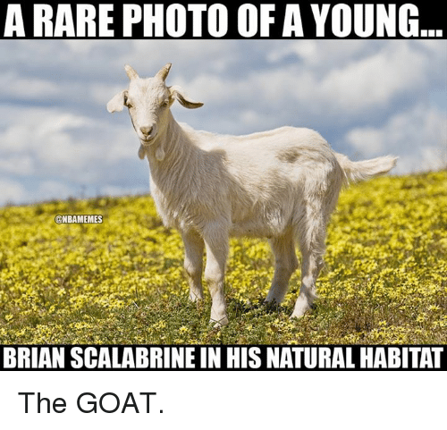 Nba, Goat, and Nature: A RARE PHOTO OF A YOUNG  @NBAMEMES  BRIAN SCALABRINE IN HIS NATURAL HABITAT The GOAT.