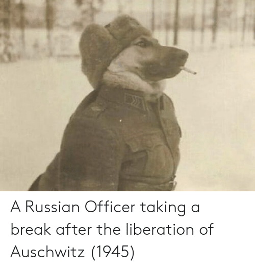Auschwitz, Break, and Russian: A Russian Officer taking a break after the liberation of Auschwitz (1945)