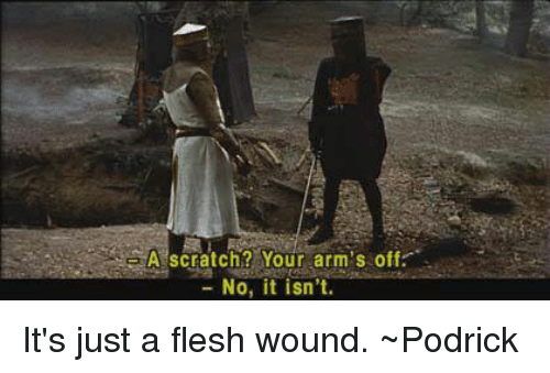 a scratch your arms off no it isnt its just 10919174 ✅ 25 best memes about just a flesh wound just a flesh wound memes