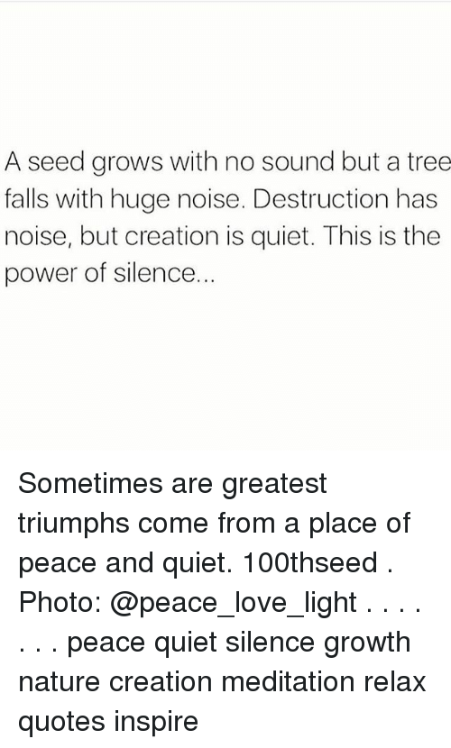 Peace And Quiet Quotes | A Seed Grows With No Sound But A Tree Falls With Huge Noise