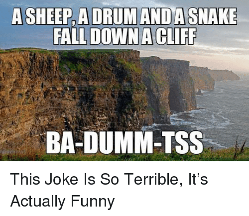 Fall, Funny, and Memes: A SHEEP, A DRUM ANDA SNAKE  FALL DOWN A CLIFF  BA-DUMM-TSS This Joke Is So Terrible, It's Actually Funny