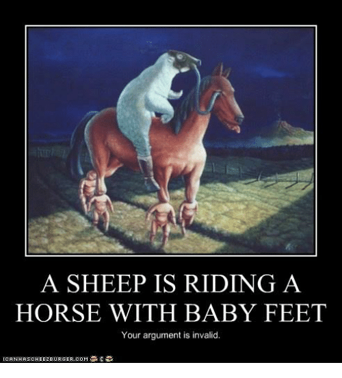 a sheep is riding a horse with baby feet your 8059273 a sheep is riding a horse with baby feet your argument is invalid