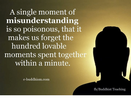 Memes, Buddhism, and Teaching: A single moment of  misunderstanding  is so poisonous, that it  makes us forget the  hundred lovable  moments spent together  within a minute.  e-buddhism com  fb/Buddhist Teaching