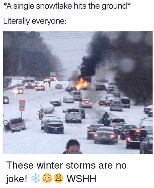 Memes, Winter, and Wshh: *A single snowflake hits the ground*  Literally everyone: These winter storms are no joke! ❄️😳😩 WSHH