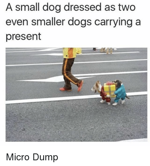 Dogs, Dog, and Micro: A small dog dressed as two  even smaller dogs carrying a  present Micro Dump