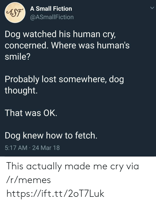 Memes, Lost, and How To: A Small Fiction  @ASmallFiction  Dog watched his human cry,  concerned. Where was human's  smile?  Probably lost somewhere, dog  thought.  That was OK.  Dog knew how to fetch.  5:17 AM 24 Mar 18 This actually made me cry via /r/memes https://ift.tt/2oT7Luk