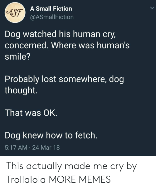 Dank, Memes, and Target: A Small Fiction  @ASmallFiction  Dog watched his human cry,  concerned. Where was human's  smile?  Probably lost somewhere, dog  thought.  That was OK.  Dog knew how to fetch.  5:17 AM 24 Mar 18 This actually made me cry by Trollalola MORE MEMES