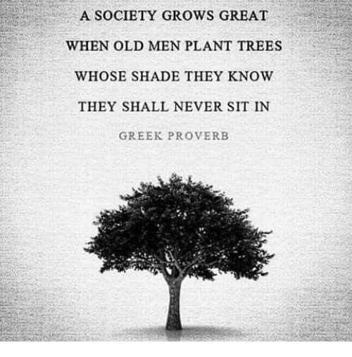 Whose Nursery Is That: A SOCIETY GROWS GREAT WHEN OLD MEN PLANT TREES WHOSE SHADE