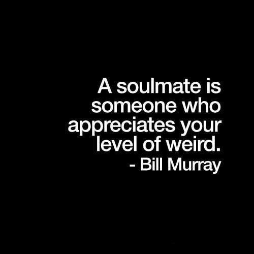 Weird, Bill Murray, and Who: A soulmate is  someone who  appreciates your  level of weird.  Bill Murray