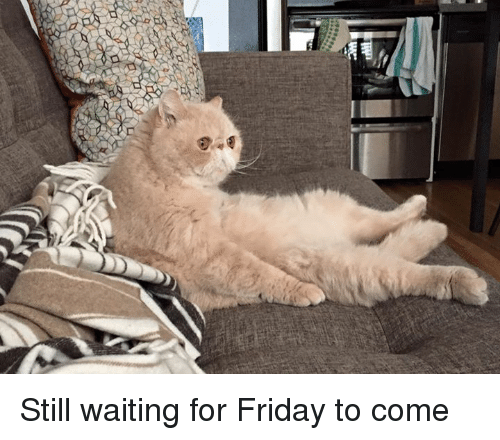 a still waiting for friday to come 5201733 a still waiting for friday to come friday meme on me me