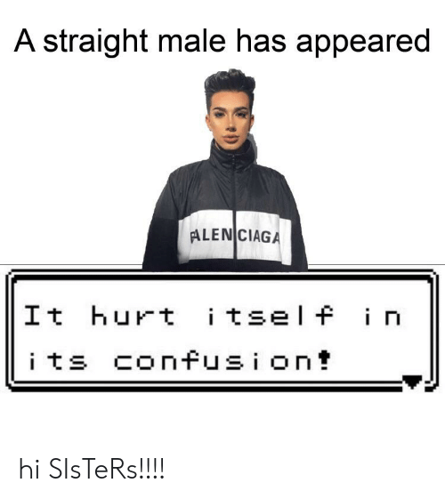 Dank Memes, Sisters, and Straight: A straight male has appeared  ALEN CIAGA  |It hurt itself in  its confusion! hi SIsTeRs!!!!