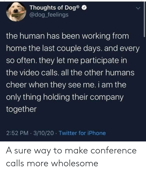 Wholesome, Make, and More: A sure way to make conference calls more wholesome