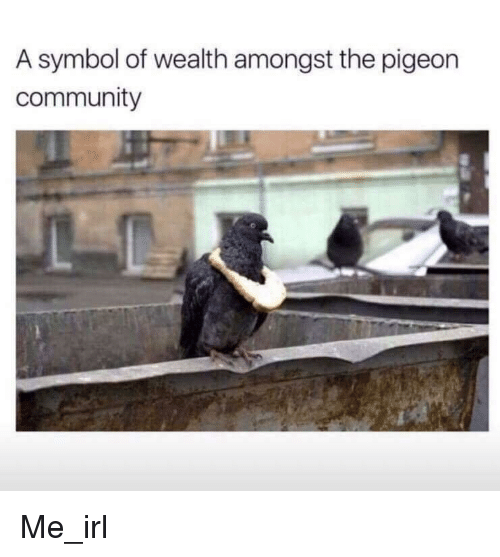 Community, Irl, and Me IRL: A symbol of wealth amongst the pigeon  community Me_irl