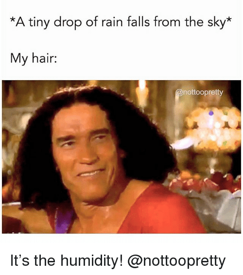 a tiny drop of rain falls from the sky my 28248200 ✅ 25 best memes about humidity humidity memes