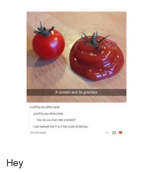 A Tomato And Its Grandpa A Wolf By Any Other Name A Wolf By Any