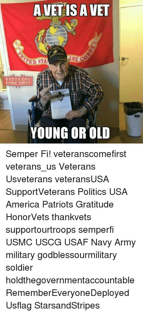 America, Memes, and Patriotic: A VET IS A VET  MARINA  NE CO  TED STA  VETERANS  COME FIRST  YOUNG OR OLD Semper Fi! veteranscomefirst veterans_us Veterans Usveterans veteransUSA SupportVeterans Politics USA America Patriots Gratitude HonorVets thankvets supportourtroops semperfi USMC USCG USAF Navy Army military godblessourmilitary soldier holdthegovernmentaccountable RememberEveryoneDeployed Usflag StarsandStripes