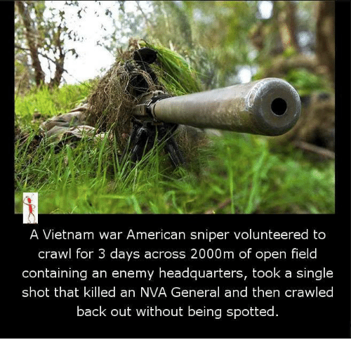 Memes, American Sniper, and Vietnam: A Vietnam war American sniper volunteered to  crawl for 3 days across 2000m of open field  containing an enemy headquarters, took a single  shot that killed an NVA General and then crawled  back out without being spotted