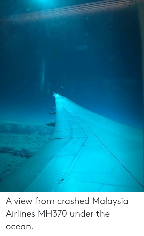 A View From Crashed Malaysia Airlines MH370 Under the Ocean