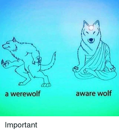 Memes, Wolf, and 🤖: a werewolf  aware wolf Important