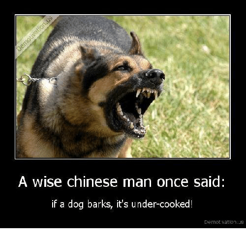 Wise Chinese Man
