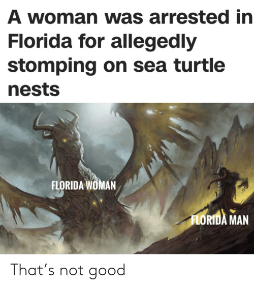 Florida Man, Florida, and Good: A woman was arrested in  Florida for allegedly  stomping on sea turtle  nests  FLORIDA WOMAN  FLORIDA MAN That's not good