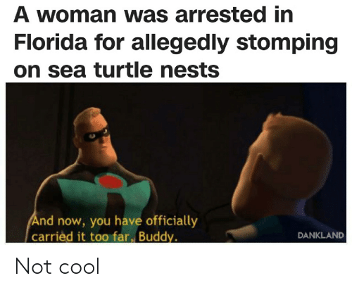 Cool, Florida, and Turtle: A woman was arrested in  Florida for allegedly stomping  on sea turtle nests  And now, you have officially  carried it too far, Buddy.  DANKLAND Not cool