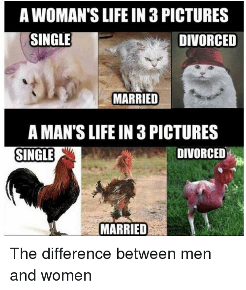 difference between dating and marriage funny pictures
