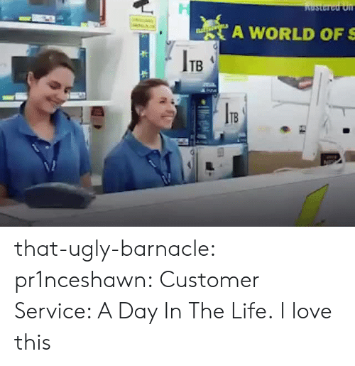 Life, Love, and Tumblr: A WORLD OF S  ITB  1B that-ugly-barnacle:  pr1nceshawn:  Customer Service: A Day In The Life.  I love this