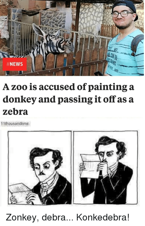 Donkey, Reddit, and Zoo: A zoo is accused of painting a  donkey and passing it off as a  zebra  11thousandkms