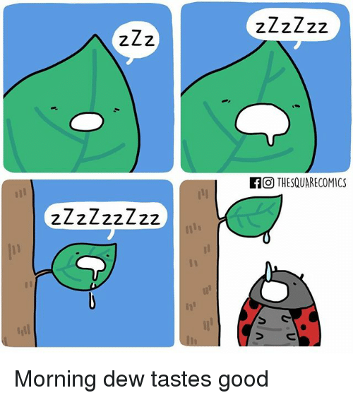 Memes, 🤖, and Zzz: A ZZz  If O THESQUARECOMICS Morning dew tastes good