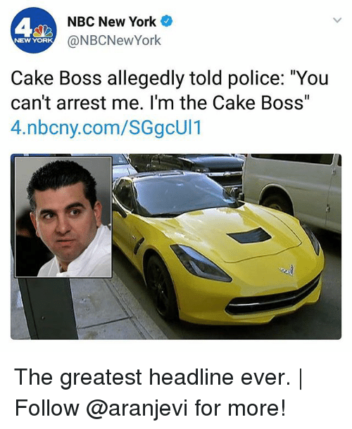 "Memes, New York, and Police: A2  NBC New York  @NBCNewYork  NEW YORK  Cake Boss allegedly told police: ""You  can't arrest me. I'm the Cake Boss  4.nbcny.com/SGgcUl1 The greatest headline ever. 