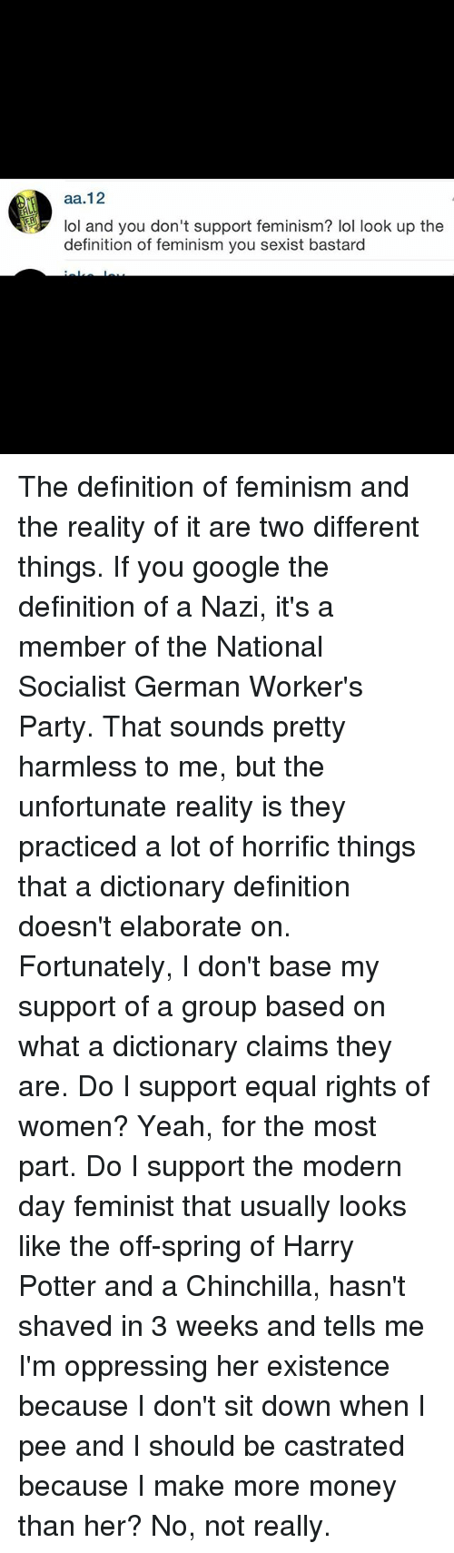 Feminism, Google, and Harry Potter: aa.12  101 and you don't support feminism? lol look up the  definition of feminism you sexist bastard The definition of feminism and the reality of it are two different things. If you google the definition of a Nazi, it's a member of the National Socialist German Worker's Party. That sounds pretty harmless to me, but the unfortunate reality is they practiced a lot of horrific things that a dictionary definition doesn't elaborate on. Fortunately, I don't base my support of a group based on what a dictionary claims they are. Do I support equal rights of women? Yeah, for the most part. Do I support the modern day feminist that usually looks like the off-spring of Harry Potter and a Chinchilla, hasn't shaved in 3 weeks and tells me I'm oppressing her existence because I don't sit down when I pee and I should be castrated because I make more money than her? No, not really.
