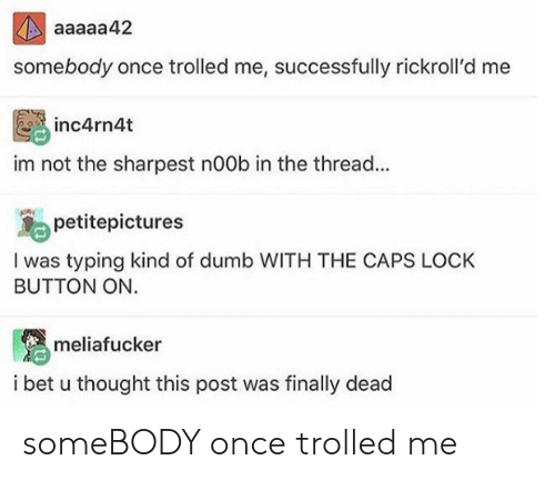 Dumb, I Bet, and Thought: aaaaa42  somebody once trolled me, successfully rickroll'd me  inc4rn4t  im not the sharpest n00b in the thread...  petitepictures  I was typing kind of dumb WITH THE CAPS LOCK  BUTTON ON.  meliafucker  i bet u thought this post was finally dead someBODY once trolled me