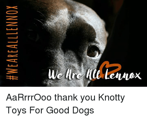 Aarrrrooo Thank You Knotty Toys For Good Dogs Dogs Meme On Meme