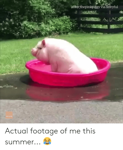 Summer, Via, and This: abby thepinkpiggy via Storyful  ÁN  itoryfu Actual footage of me this summer... 😂